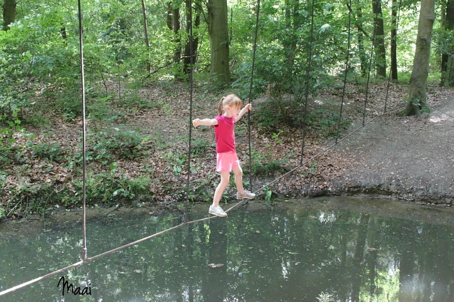belevenissenbos lelystad, dagje weg met gezin, erop uit met kinderen, flevoland, gratis, natuurspeeltuin