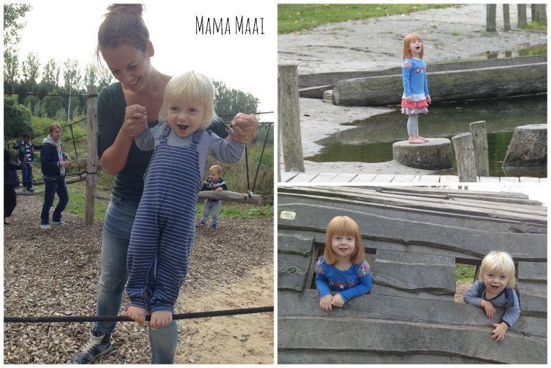 stichting AAP, fun forest almere