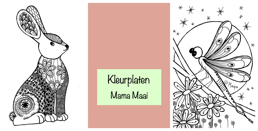 kleurplaat konijn, kleurplaat libelle, kleurplaten voor volwassenen