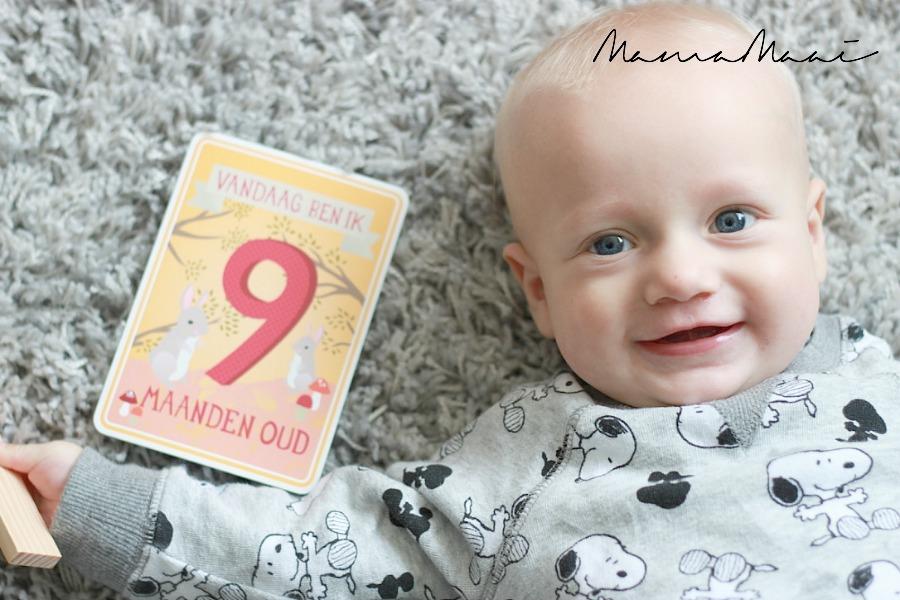 siem 9 maanden