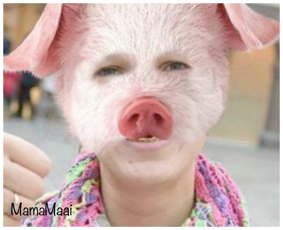 Mama is een varken