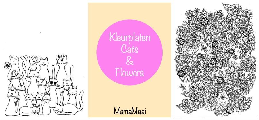 kleuren voor volwassenen, coloring page cats flowers, kleurplaten