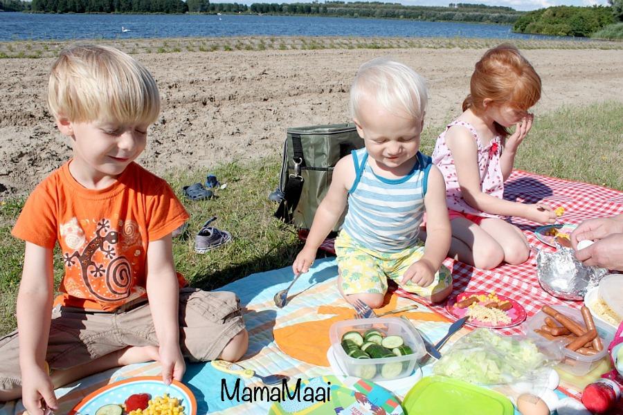 hoe maak je van je spontane picknick een succes