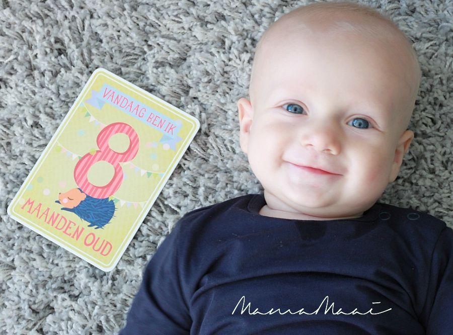 siem 8 maanden