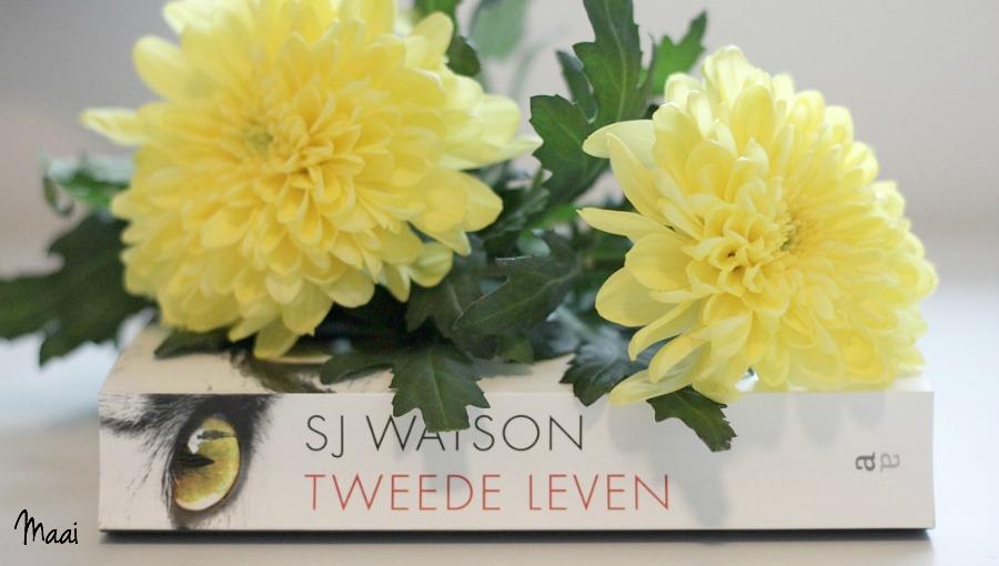 Tweede leven, S.J.Watson, thriller, boekreview, recensie, samenvatting