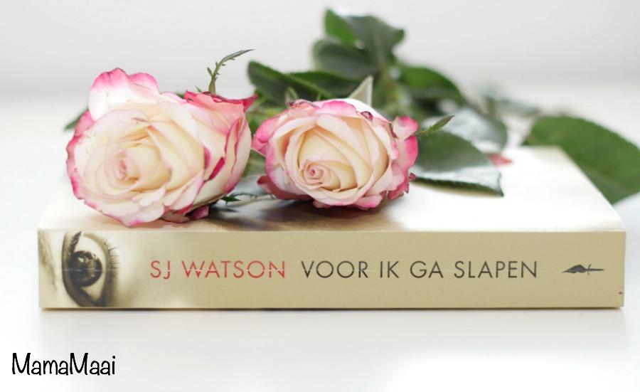 voor ik ga slapen, SJ Watson, boekreview